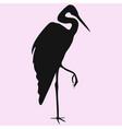 heron vector image