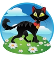 Black fun terrible cat on color background vector image vector image