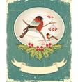 bullfinches in winter vector image vector image
