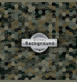 Camouflage military hexagon pattern background vector image vector image