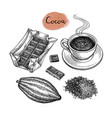 Cocoa and chocolate set