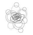 tattoo with rose and circles on white background vector image vector image