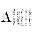 alphabet line floral decoration letters logo vector image vector image