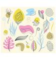 botanical and organic design elements set vector image