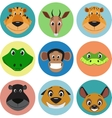 collection animals vector image vector image