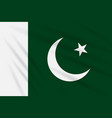 flag pakistan swaying in the wind realistic vector image