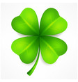 lucky clover leaf vector image vector image