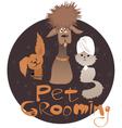 Pet Grooming vector image