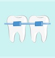 teeth braces in flat style vector image