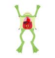 anatomy frog internal organs toad amphibian