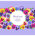 Pansy card vector image vector image