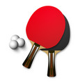 ping pong wooden table tennis rackets vector image vector image