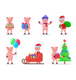 set of cute little animal piglets vector image vector image