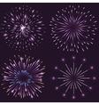 Set of festive sparkling fireworks vector image