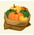 stylized sack with fresh ripe pumpkins vector image vector image