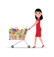 woman with shopping trolley full groceries vector image
