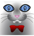 abstract cat face with big eyes vector image vector image