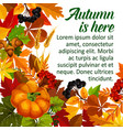 autumn pumpkin and fall season leaf poster design vector image vector image