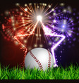 baseball ball on grass vector image