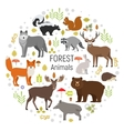 circle set plants and forest animals vector image