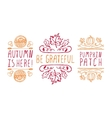 Hand-sketched typographic elements for autumn