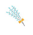 pussy willow icon vector image vector image