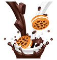 sweet biscuit with chocolate isolated on white vector image vector image