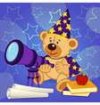 teddy bear astronomer