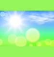 summer sunshine background vector image