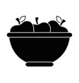 bowl with apples fruits vector image vector image