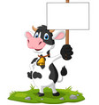 cartoon funny cow holding blank sign vector image vector image