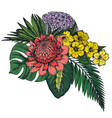 composition hand drawn tropical flowers vector image vector image