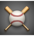 dark background of baseball leather ball and vector image vector image