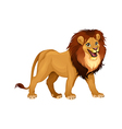 Lion king vector image vector image