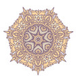 mandala with many ornaments ethnic tribal style vector image