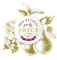 pear juice paper emblem over hand drawn pear vector image vector image