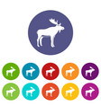 deer icons set flat vector image