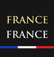 france - golden and white captions vector image vector image
