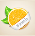 fresh orange vector image vector image