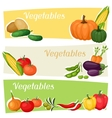 Horizontal banners with fresh ripe stylized vector image vector image