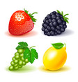 icon set strawberries blackberry grape lemon white vector image