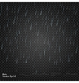 Rain Really transparent effect vector image