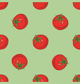 seamless pattern with ripe red tomatoes vector image