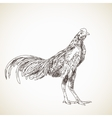 sketch asian rooster vector image