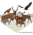 Yellowstone National Park animals Grizzly moose vector image