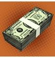 bundle hundred-dollar bills vector image vector image