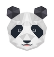 panda bear isolated icon vector image vector image