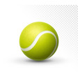 tennis ball isolated on white green vector image