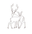 coloring book couple deers isolated vector image vector image