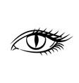 eye on white background makeup on halloween vector image